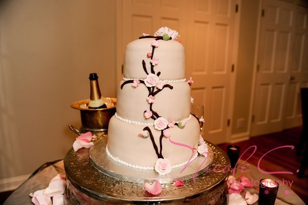 How Much Are Publix Wedding Cakes Wedding And Bridal Inspiration