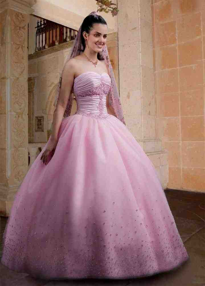 Pink Wedding Dresses Princess : Pink princess wedding dress and bridal inspiration