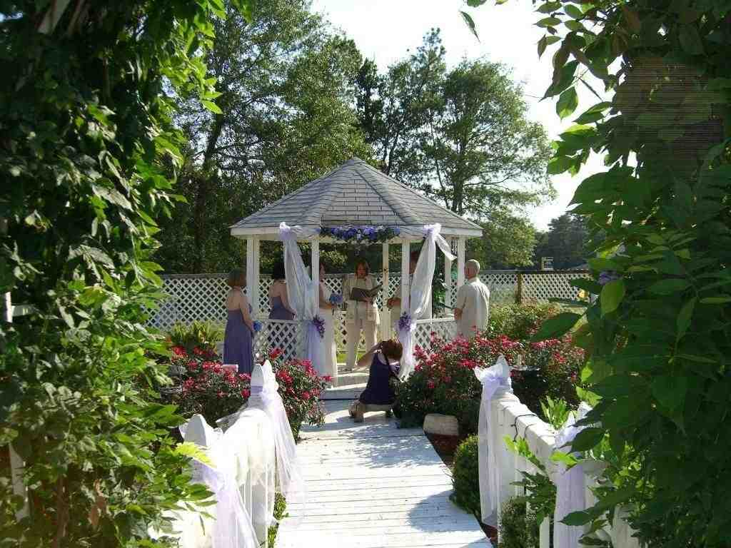 Small Outdoor Wedding Ideas On A Budget Wedding And Bridal